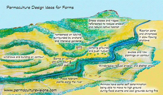 permaculture_farm_Ideas-1024x601